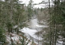 View of the Brule River from the ranger station office - Photo credit: DNR