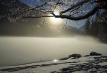 Frozen Lake in Winter with Snow - Ice Fishing Digest