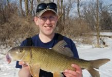 State records topple for 2 species of Minnesota fish