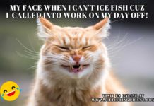 Ice Fishing Meme: My Face When I can't Ice Fish Because I Got Called into Work on My Day Off.